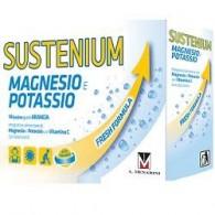 SUSTENIUM MAGNESIO POTASSIO 14 BUSTINE 4 G