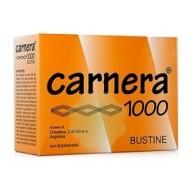 CARNERA 1000 18 BUSTINE