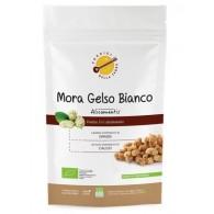MORA GELSO BIANCO ALICAMENTIS BIO 150 G PRODIGI DELLA TERRA