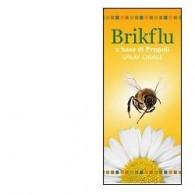 BRIKFLU SPRAY OROSOLUBILE 30 ML