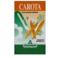 CAROTA ERBE 75CPS FL