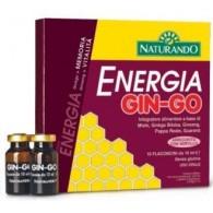 ENERGIA GIN-GO 10 FLACONCINI DA 10 ML
