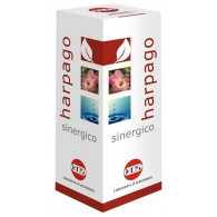 HARPAGO SINERGICO GOCCE 100 ML