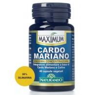 MAXIMUM CARDO MARIANO 40 CAPSULE