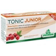 TONIC JUNIOR 12 FLACONCINI X 10 ML