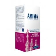 AMIMA 12 BUSTINE - 1