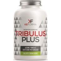 TRIBULUS PLUS 60 CAPSULE